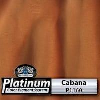 Cabana P1160 Platinum Color Pigment